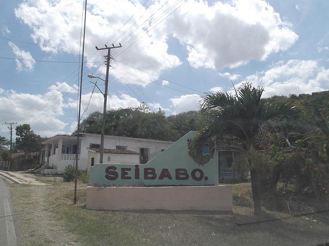 Seibabo