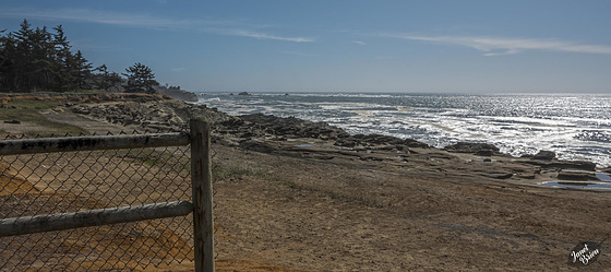 Pictures for Pam, Day 202: HFF: Rugged Coos Bay Coastline