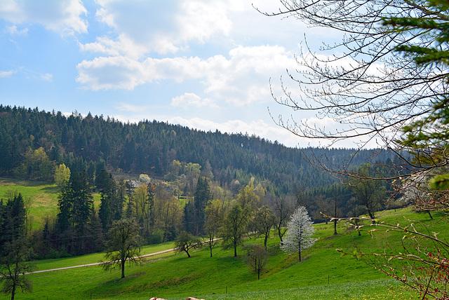 Berge   Täler in Fichtenberg
