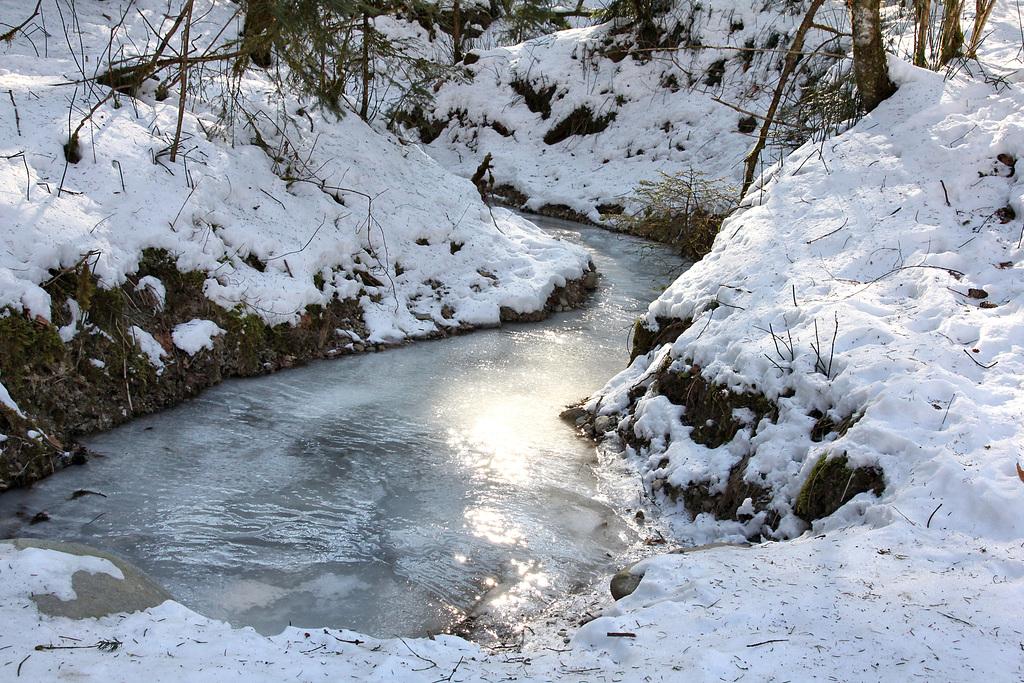 gefrorener Zufluss der Argen