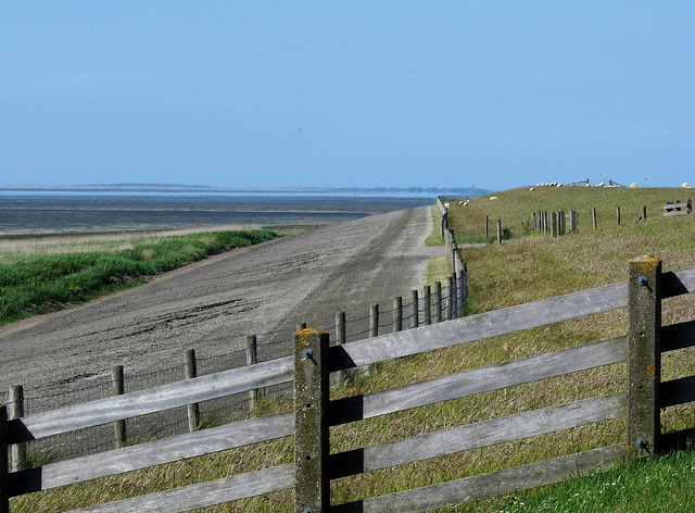 Looking over the Waddenzee ..