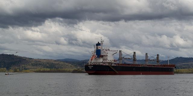 Rainier OR / Longview WA seaport (#0517)