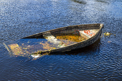 Partially Sunken Rowing Boat