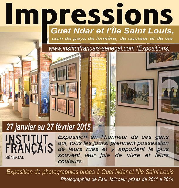 Exposition Institut Français de Dakar