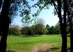 Auf dem Golfplatz