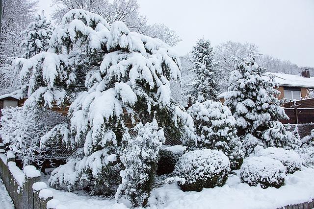 20150131 6763VRAw [D~SHG] Schnee, Rinteln