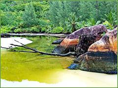 Seychelles : i graniti colorati sono una esclusiva di questa isola Praslin