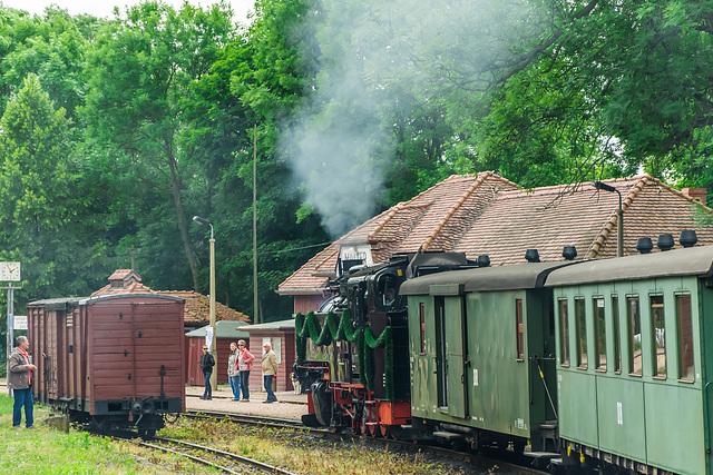 Die Weißeritztalbahn erreicht den Bahnhof Malter
