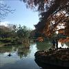At the carp pond.