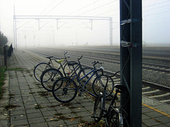 "Bicycles waiting for ""riders"""