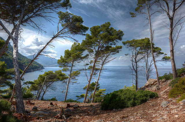 The Wonders of Mallorca:  The wild paradise of Majorca
