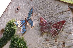 Ces papillons attirés par les vieilles pierres ...