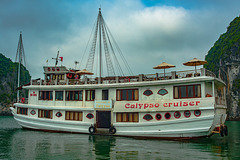 Calypso Cruiser goes the Halong tour