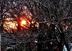 Sunrise & Farewell 4 February 2018