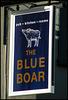 boring Blue Boar sign