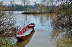 Nach dem Hochwasser ...  After the flood ...