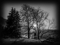frueher wintertag