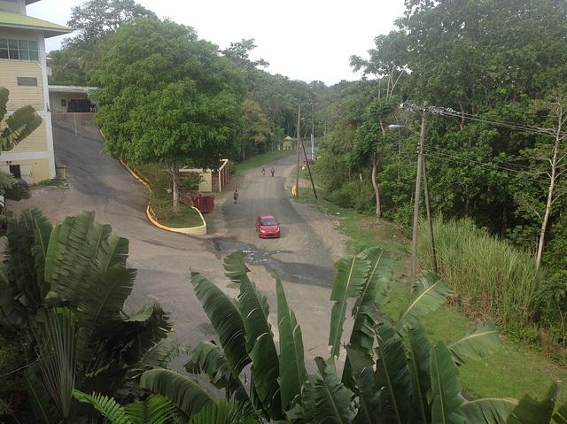 Road at back of Gamboa Hotel