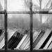 books in the window