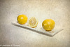 Lemon Still Life Oil Painting 062216-001
