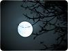 Je suis dans la lune :-)