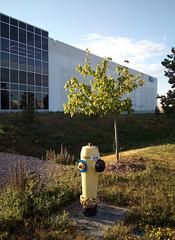 Histoire de borne-fontaine / Hydrant story