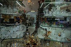Böhmisches Glas…