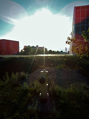 Hydrant rays / Rayons de borne-fontaine (modifiée)