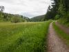 Blankenheim - Lampertstal im späten Frühjahr