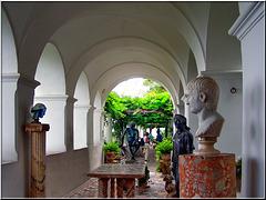 Capri : Villa San Michele - (811)