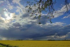 Dramatischer Himmel...