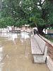 Bancs mouillés sous une pluie cubaine