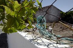 Penedos, HFF and Blue rope