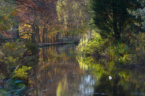 Canal colours at Greenfield