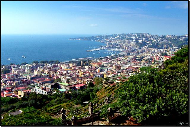Napoli : Panoramica lato nord - Mergellina e Fuorigrotta - (831)