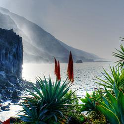 La Palma. Hasta la Vista.  ©UdoSm