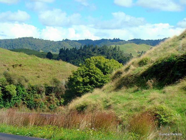 Rural Hills.