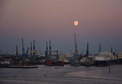 Vollmond über dem Hafen