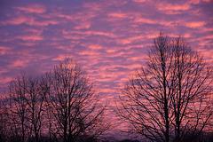 Morgendliche Farben