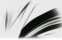 ... paper stripes ... pensieri ...