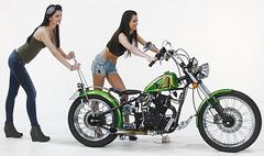 1 (263)...bike