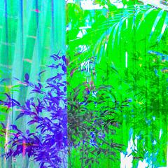 265/365 leafy