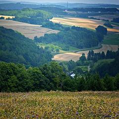 Typical Main-Franconian Landscape