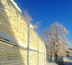 Happy snowy fence