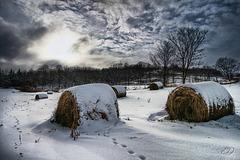 Hiver rural