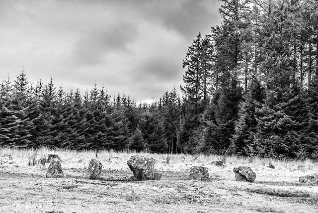 Fernworthy Stone Circle- 20160319