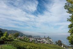 Nebel über dem Untersee - Blick vom Schloss Arenenberg über Mannenbach zur Höri (© Buelipix)