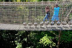 HFF von der Hängebrücke (PiP)