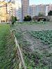 Benfica's Farm