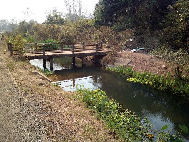 Un petit pont et son ruisseau florissant